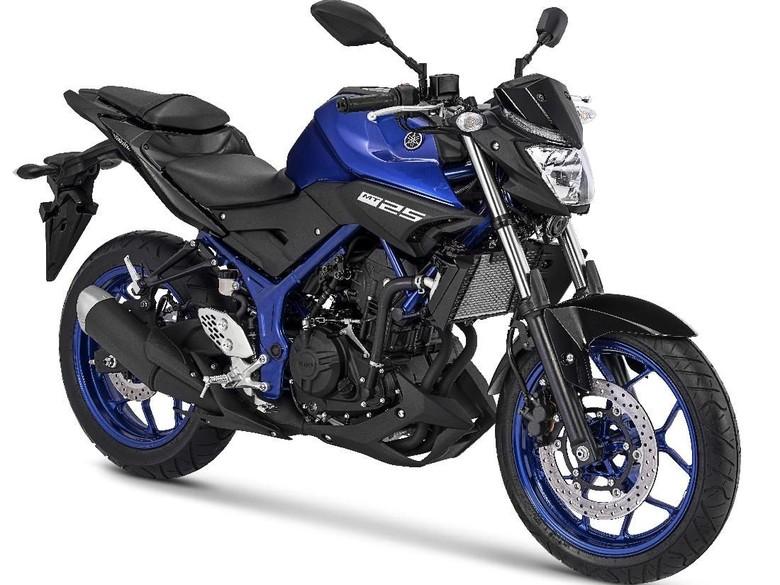 7 Fakta Yamaha MT-25, Motor Penguasa Jalanan/Foto: Dok. Yamaha