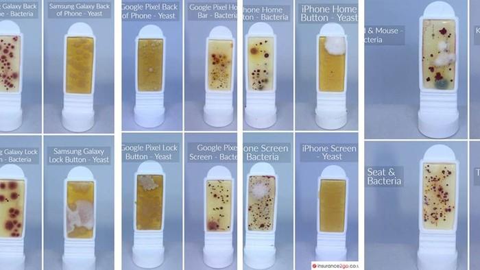 Survei terbaru yang dilakukan pada 1.000 orang di Inggris mengungkap kontaminasi mikroba pada beberapa produk smartphone, lalu membandingkannya dengan paparan bakteri dan toilet. (Foto: Insurance2go/diolah)