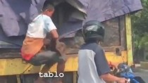 Video Bajing Loncat di Jakut Viral, 3 Pelaku Ditangkap