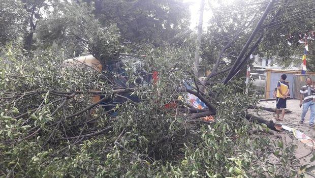TransJ Terguling Tabrak Pohon di Jaksel karena Hindari Pemotor