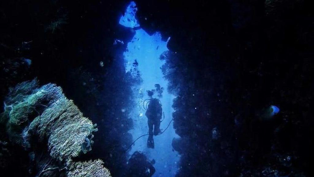 Kepulauan Banda, Bukti Keindahan Bawah Laut Indonesia