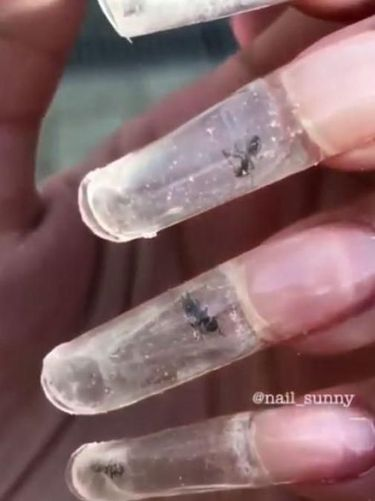Semut Terjebak di Dalam Kuku, Nail Art Ini Bikin Geleng-geleng Kepala
