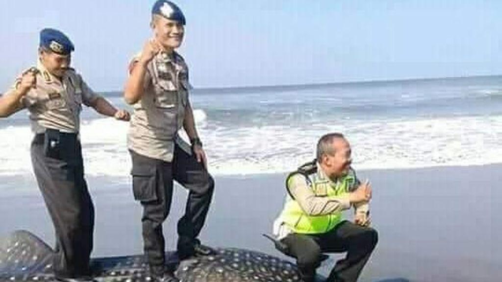 Penampakan Bangkai Hiu yang Diinjak Polisi untuk Berfoto