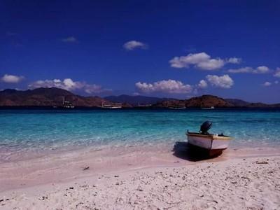 Pantai-pantai Cantik di Taman Nasional Komodo yang Ternoda