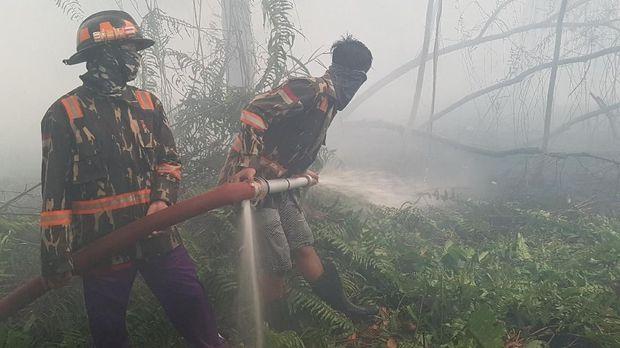 KLHK Menang Gugatan Karhutla, 3 Perusahaan Ganti Rugi Rp1,3 T