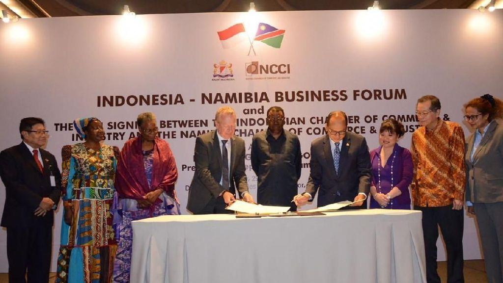 Namibia Ingin Kerja Sama Infrastruktur hingga Pertanian dengan RI