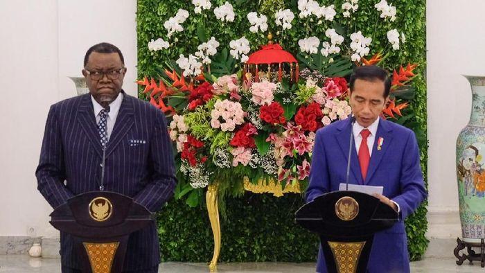 Jokowi menerima kunjungan Presiden Namibia Hage Gottfried Geingob. Foto: Andhika Prasetia/detikcom