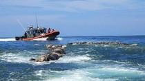Ratusan Penyu yang Terancam Punah Mati Misterius di Pantai Meksiko