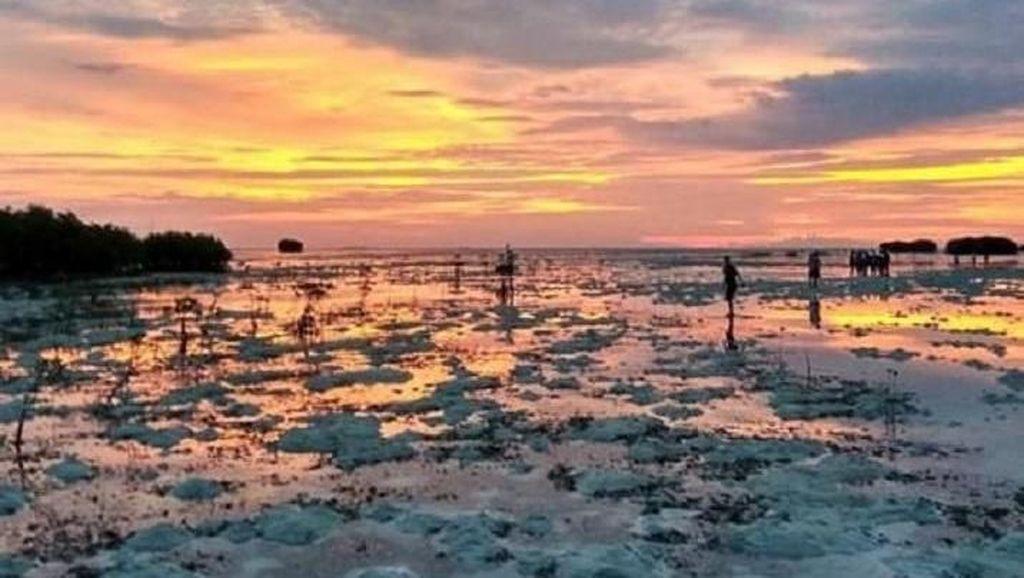 Keindahan Tersembunyi di Pulau Pari
