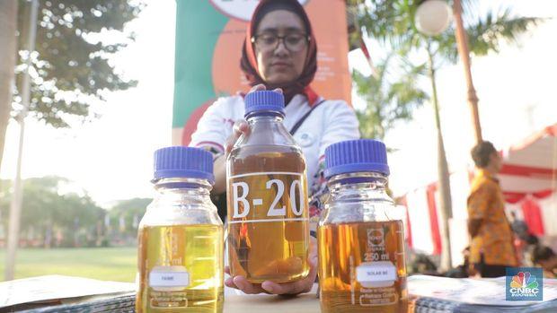 Pertamina Kurang Pasokan Minyak Sawit, Mandatori B20 Mandeg?