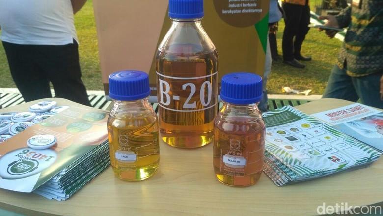 Biodiesel. Foto: Achmad Dwi Afriyadi