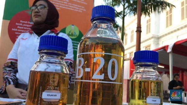 Pasokan Minyak Sawit Untuk B20 Memang Masih Seret