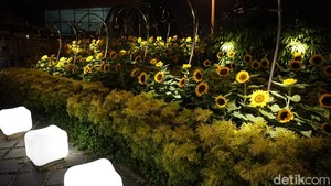 Ada Taman Bunga Matahari di Bandara Ini, Percaya?