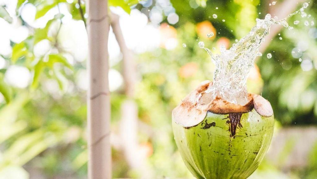 Manfaat Minum Air Kelapa di Tengah Musim Pancaroba