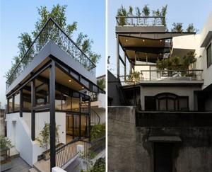 Inspiratif! Bikin Taman Keren di Atap Rumah Seperti Ini