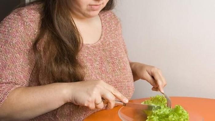 Ilustrasi kelebihan berat badan. Foto: Istimewa