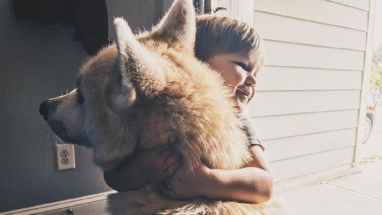Ilustrasi memeluk anjing (iStock)