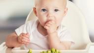 9 Zat Gizi yang Harus Diasup Anak agar Tumbuh Kembangnya Optimal