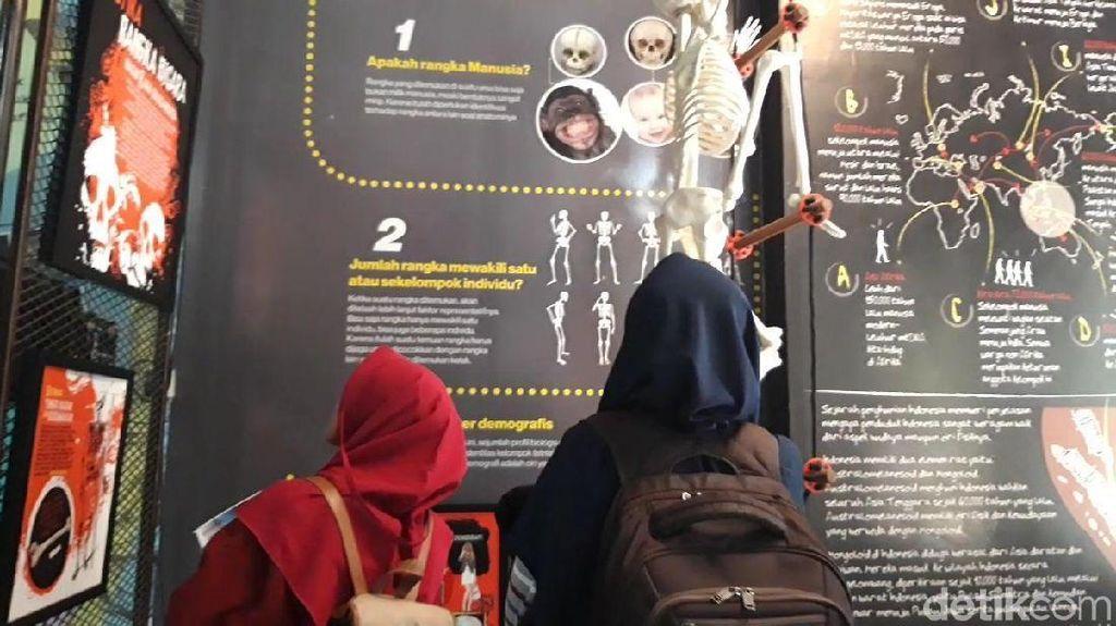 Tak Cuma Makam, di Museum Kematian Juga Ada Perpustakaan Kece