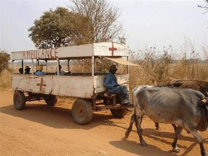 Kamu bisa mendengar kedatangan ambulans ini dari sirine lenguhan sapi. (Foto: Facebook)