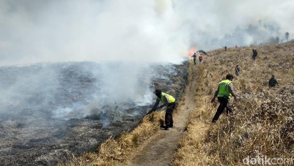 Kebakaran Savana Bromo Tak Ganggu Ekosistem dan Kunjungan Wisatawan