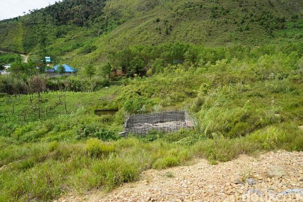 Kandang babi di Pegaf letaknya jauh dari pemukiman. Para sopir juga sangat menghindari atau menolak jika ada warga lokal yang meminta tumpangan gratis (Masaul/detikTravel)