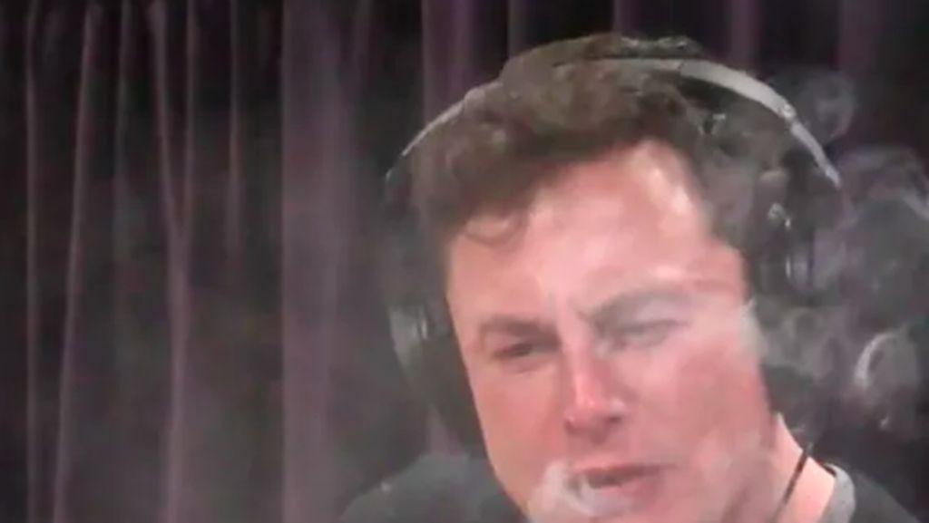 Isap Ganja, Elon Musk Ditawari Main Film Porno