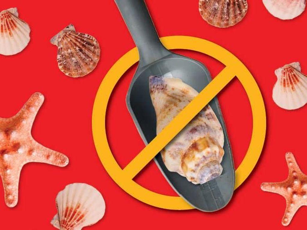 Stop Ambil Pasir Pantai!