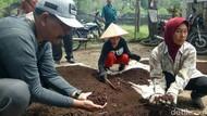 Tekan Pengeluaran Biaya Pupuk, Perkebunan Ini Manfaatkan Cacing