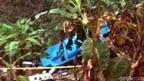 Drama Ngesot Sopir Bus yang Tewaskan 21 Orang di Sukabumi