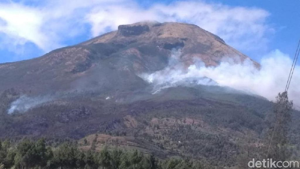 Dinilai Berbahaya, Pemadaman Api di Gunung Sindoro Pakai Heli Batal