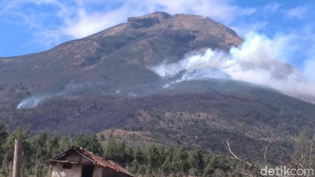 Kebakaran di Gunung Sindoro Padam, Jalur Pendakian Masih Ditutup