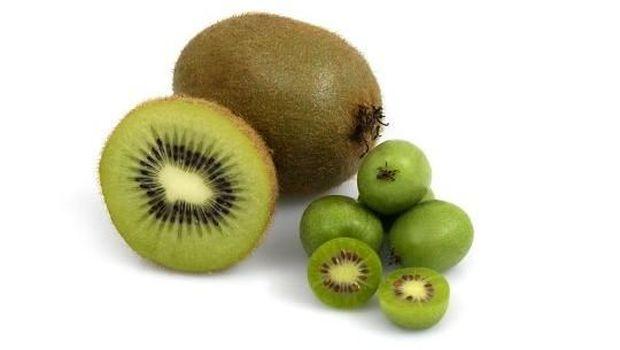 buah baby kiwi