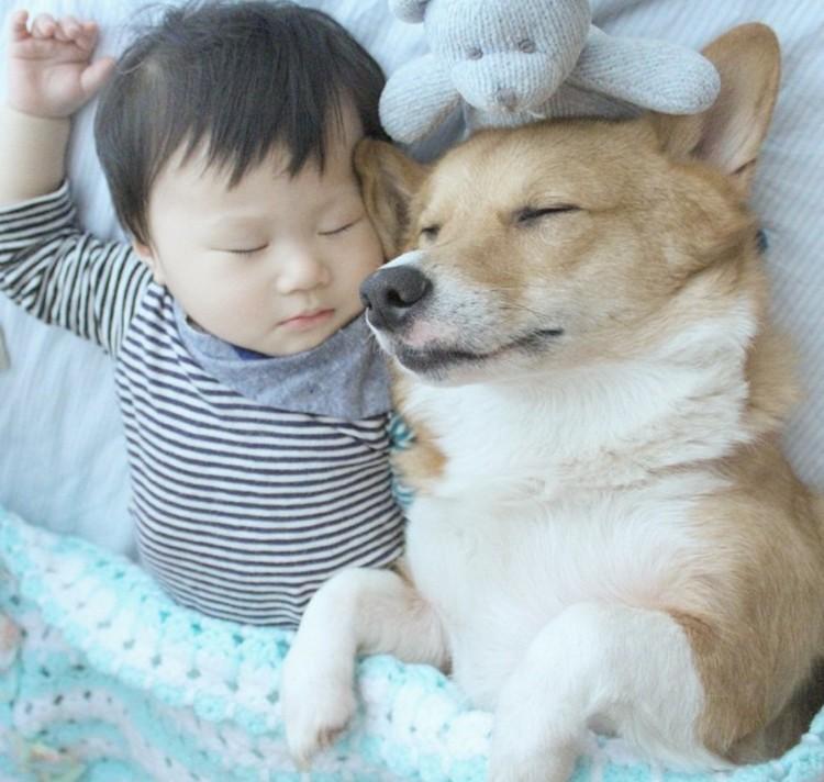Ini dia Hugh dan anjing kesayangannya yang bernama MJ. Melihat Hugh dan MJ tidur seperti ini rasanya hati adem banget nggak sih, Bun? He-he. (Foto: hugh_mj)