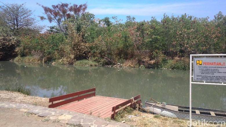 Sungai yang diyakini didiami buaya putih (Sudirman Wamad/detikTravel)