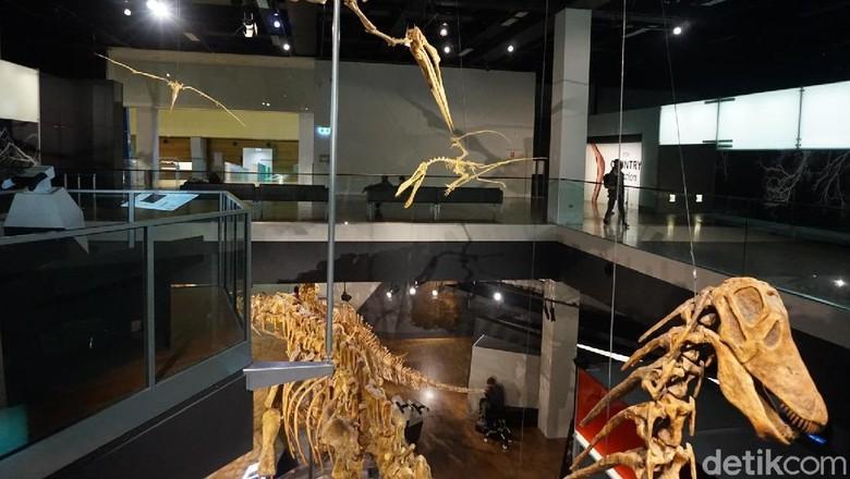 Melbourne Museum (Shinta/detikTravel)