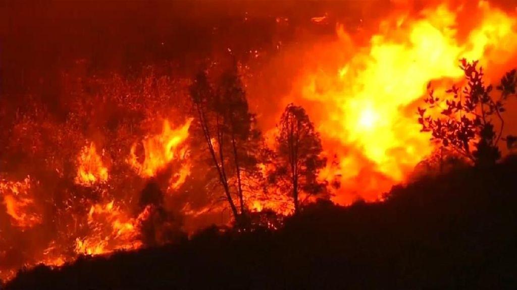 Kebakaran Hutan Melanda Madrid, 75 Orang Dievakuasi