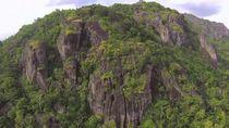 Walhi: Ada Potensi Punahnya Hewan Endemik di Geopark Gunung Sewu