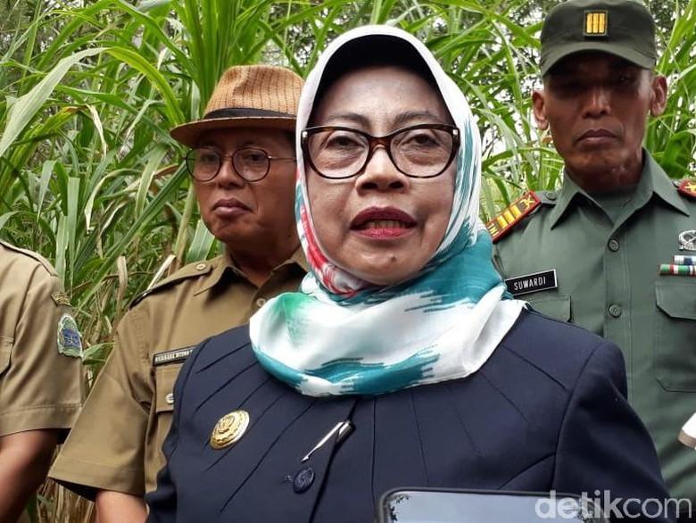 NasDem: Bupati Gunungkidul Tolak Masuk Timses, Tetap Dukung Jokowi