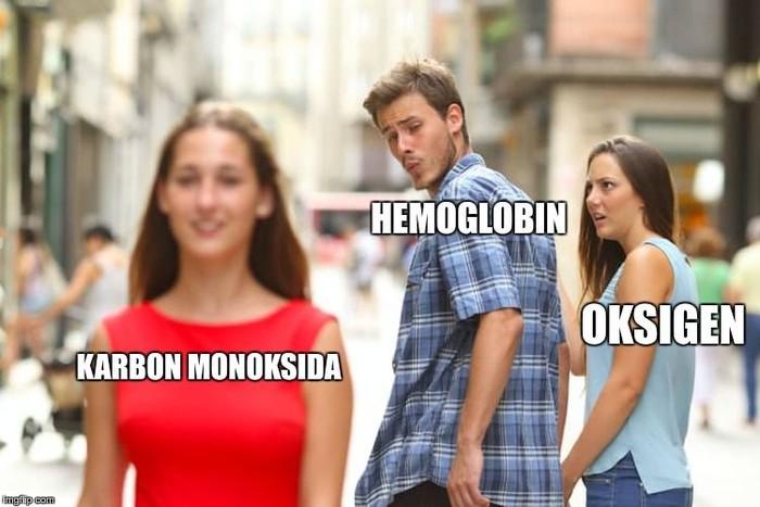 Kasus keracunan gas dalam mobil biasanya terjadi ketika hemoglobin dalam sel darah merah tidak mengikat oksigen. Secara alami hemoglobin akan lebih tertarik pada gas buang karbon monoksida yang beracun. (Foto: Internet)