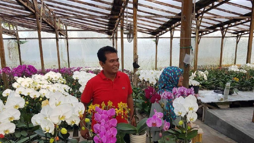 Bertani Hortikultura Cocok untuk Milenial