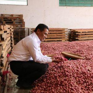 Kementan Klaim Sektor Pertanian Jadi Rujukan Prestasi Pemerintah