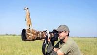 Foto: Sudah menyiapkan lensa tele, tapi meerkat yang mau difoto malah naik ke lensanya. Bagaimana motretnya ini? (Twitter/@polychromantium)