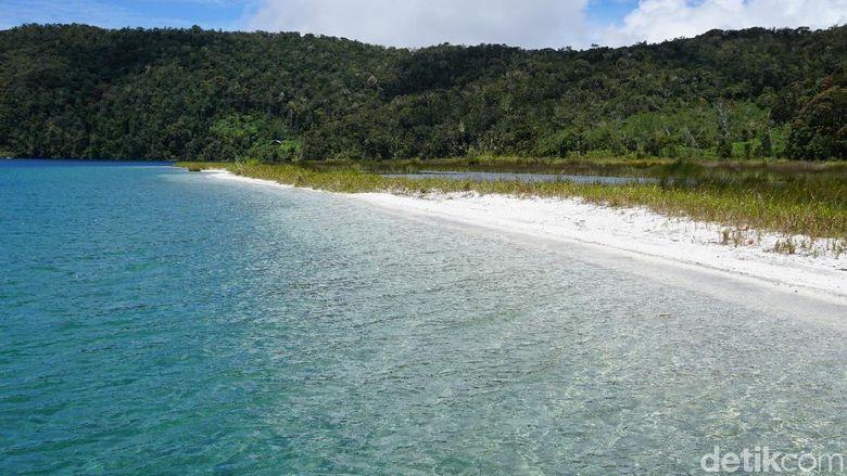 Pantai pasir putih di Anggi Gida, Pegaf (Masaul/detikTravel)