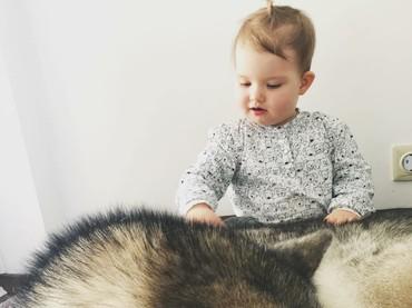 Anjing jenis ini memang model anjing bertubuh besar, Bun. Maka jangan heran tubuh si kecil bisa terlihat jauh lebih kecil ketika mereka bersama si anjing. (Foto: Instagram/hakunamatatas_team)