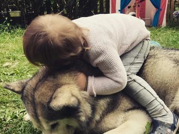 Anjingnya pasrah aja deh ditunggangi seperti itu. Hi-hi-hi. (Foto: Instagram/hakunamatatas_team)