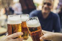 Hasil Penelitian Ungkap Bir, Wine dan Cokelat Bikin Panjang Umur