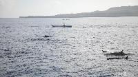 Panorama yang indah di lautan Wakatobi (Zaky Fauzi/detikTravel)