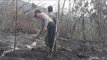 Kebakaran di Gunung Wilis Merembet ke Madiun, Ini Langkah KPH