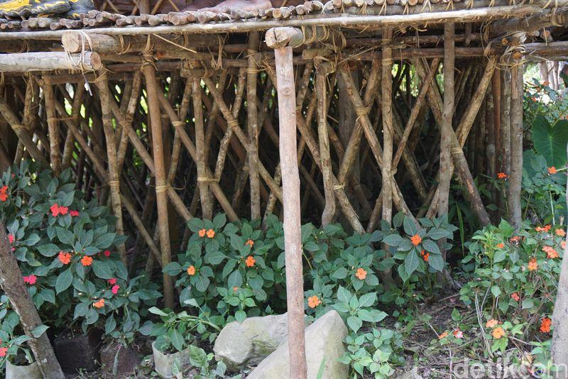 detikTravel ke Pegaf bulan lalu dan tak lupa kami menginap di rumah asli Suku Arfak. Rumah Kaki Seribu termasuk dalam rumah panggung (Masaul/detikTravel)